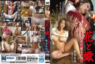 BDA-013 english subtitles (.srt)