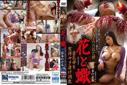 BDA-014 english subtitles (.srt)